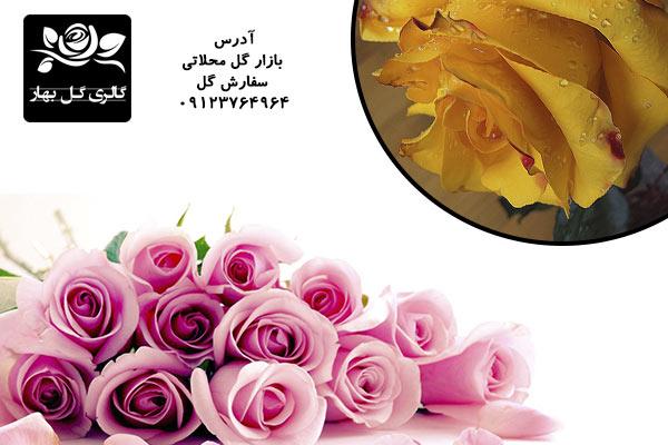 بهار گل-گل رز-گل رز و یک سورپرایز عاشقانه