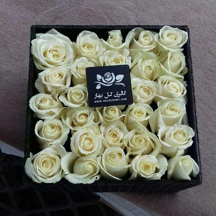 بهارفلاور-باکس گل رز -گل رز زرد ،هلندی، ایرانی -