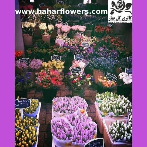 نحوه ارسال گل به ایران